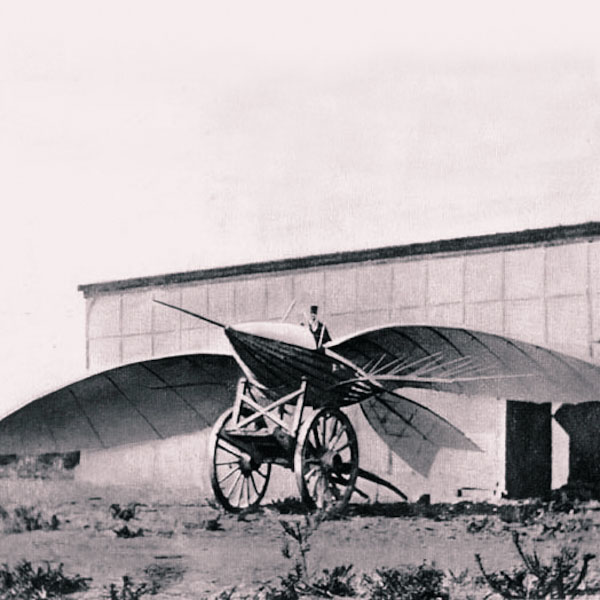 Jean-Marie Le Bris's flying machine1868